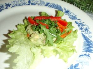 7-vuotiaan taidonnäyte salaattirullan täyttämisestä.